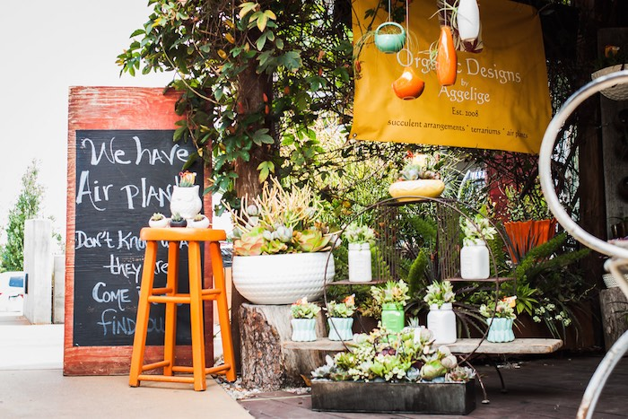 Costa Mesa, I Heart Costa Mesa, Organic Designs by Aggelige, Organic Designs, Plants, Plant Arrangements, Air Plants, Vintage Pots, Centerpieces, Terrariums, North Costa Mesa, The CAMP, Orange County, Gifts, California.