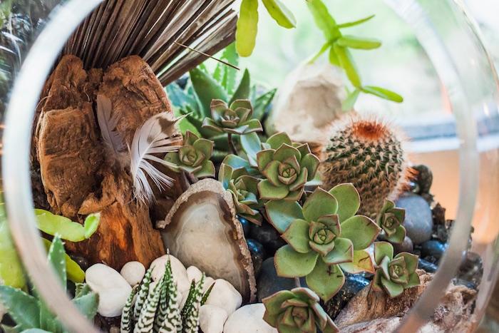 Costa Mesa, I Heart Costa Mesa, Organic Designs by Aggelige, Terrarium, Centerpieces, Gifts, The CAMP, Orange County, California