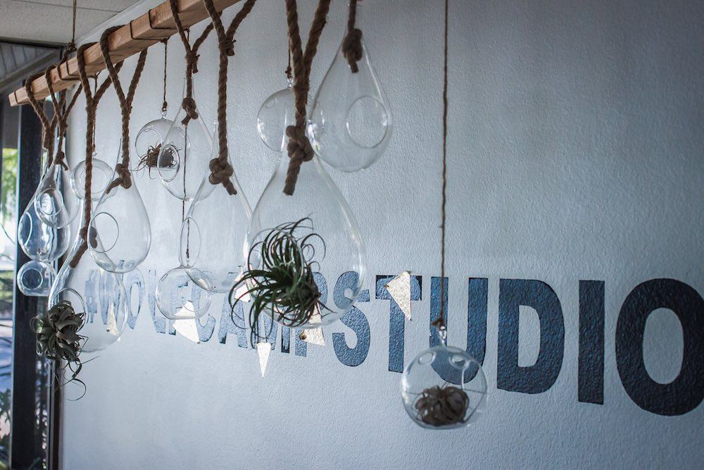 Hashtag Wolf Camp Studios