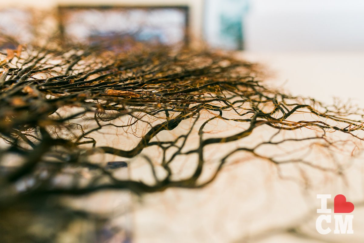 Framing a Sea Fan at Best Framing in Costa Mesa, California