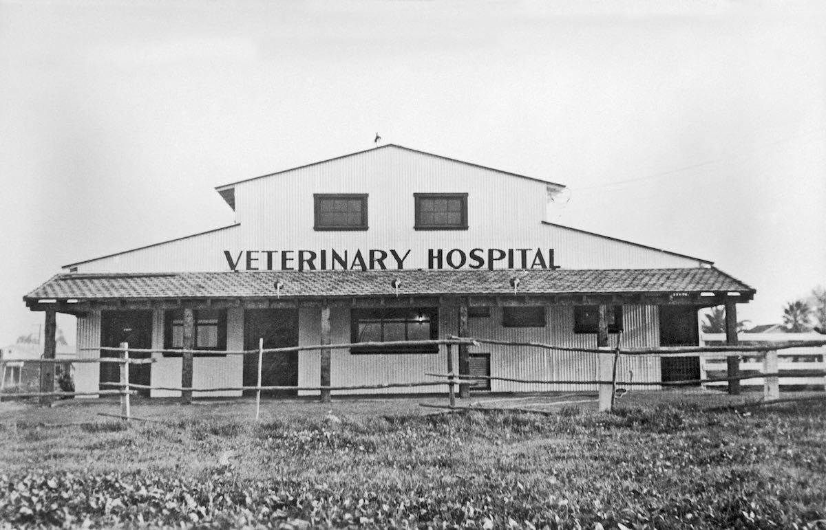 The Original 1947 Newport Harbor Animal Hospital Building Costa Mesa, California
