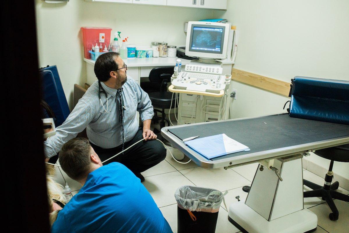 Dr. Ashbran performs an ultrasound at Newport Harbor Animal Hospital in Costa Mesa, California